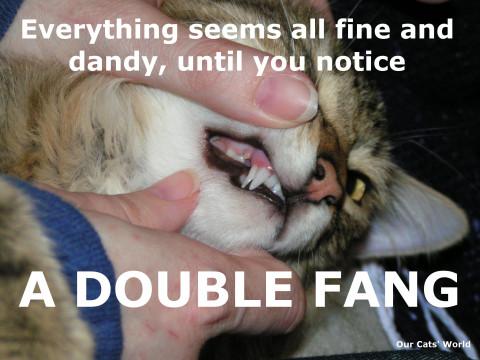 Double_Fang
