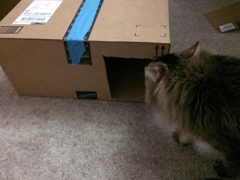 Chase_Cat_Houses