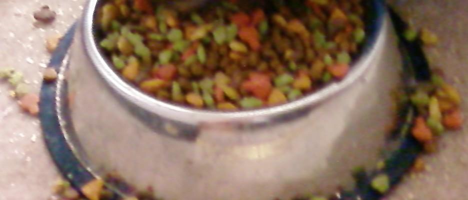 Cat_Chow_Fillers_In_Cat_food